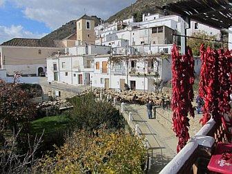 Photo of Ferreirola scene with goats